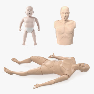 3D model aid training manikins