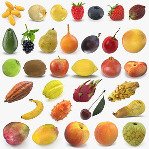 fruits 7 model