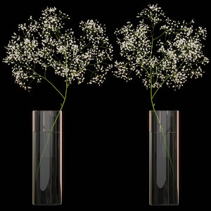 3D gypsophila flower vase