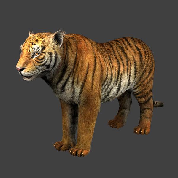 3D tiger riging fur