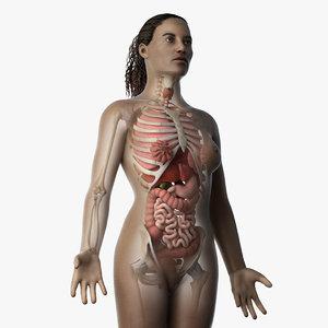 skin african female skeleton 3D model