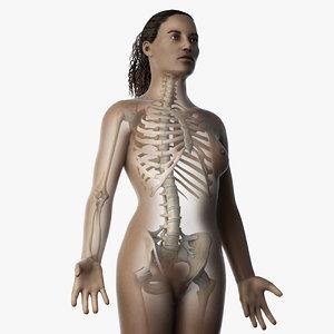 skin african female skeleton 3D