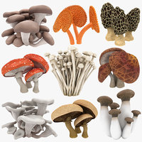 mushrooms 03 3D
