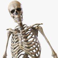 Skeleton 2.0