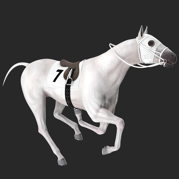 3D racehorse white horse rigged