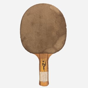 3D old wooden table tennis