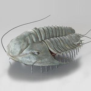 trilobite extinct marine arachnomorph 3D model