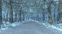 3D model road winter