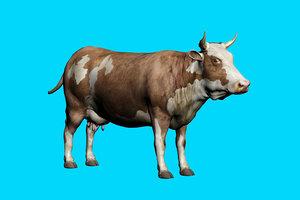 animal nature 3D model