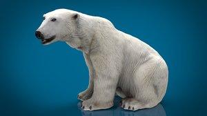 polar bear female 3D