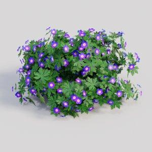 3D geranium purple model