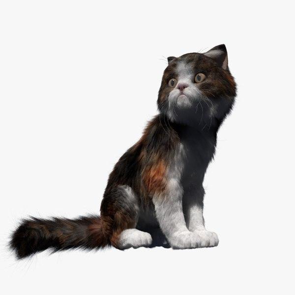 3D cat rigged fur animate