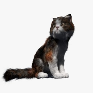 3D cat rigged fur animate