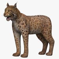 3ds max lynx