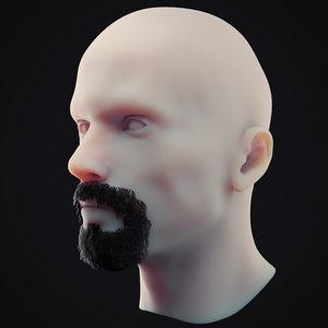 3D beard 1 model