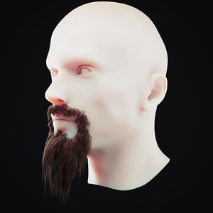 3D beard 3