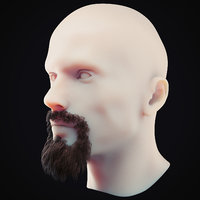 Beard Low Poly 2