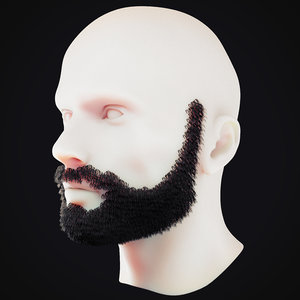 beard 7 3D