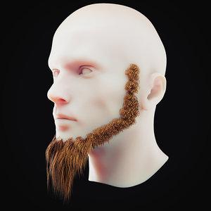 3D beard 4 model