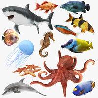 Underwater Animals Big Collection 13 in 1