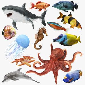 underwater animals big 13 model