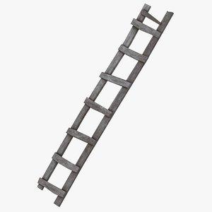 3D old ladder