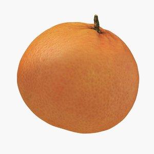 tangerine food fruit model