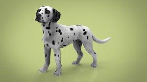 3D dog canine animal