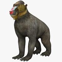 3D monkey animal mammal