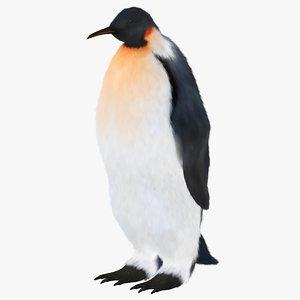 3D penguin bird model