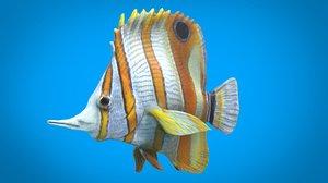 3D coral fish