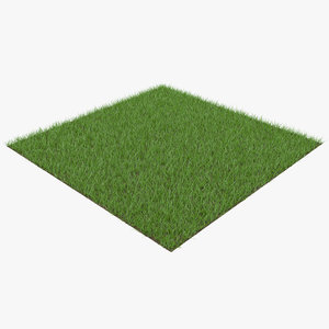 grass patch 3D model