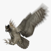 3D great horned owl animation model
