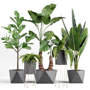 3D tree nature plant model