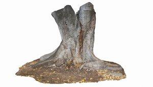 3D tree trunk 26