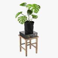 3D realistic stool plant