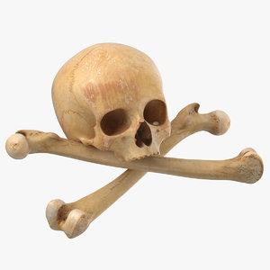3D pirate skull bones 01 model