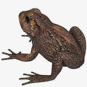 3d model toad cane
