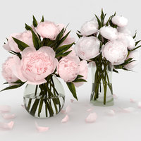 bouquet white pink model