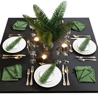 table setting 18 fern 3D model
