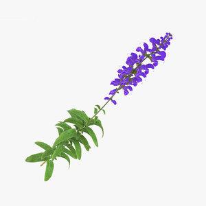 flowers plant nature 3D model