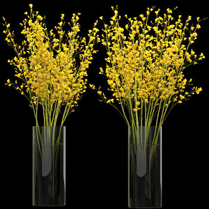 big bouquet orchid oncidium 3D model