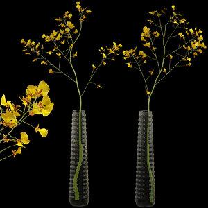 orchid oncidium modern vase 3D