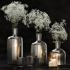 decorative set gypsophila flower 3D