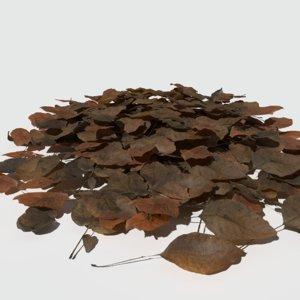3D dry walnut leaves model