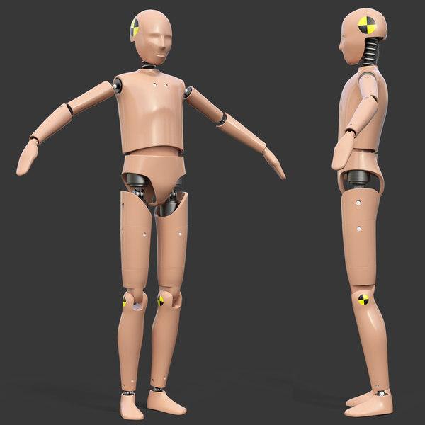 3D model teenager crash test dummy