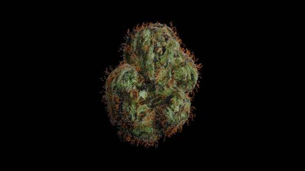 3D weed bud
