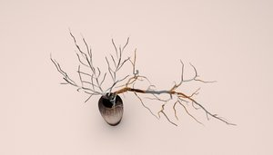 3D decor branch vase model