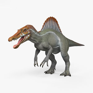 3D spinosaurus theropod dinosaurs model