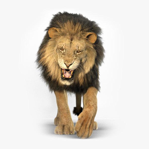 3D lion redshift animation